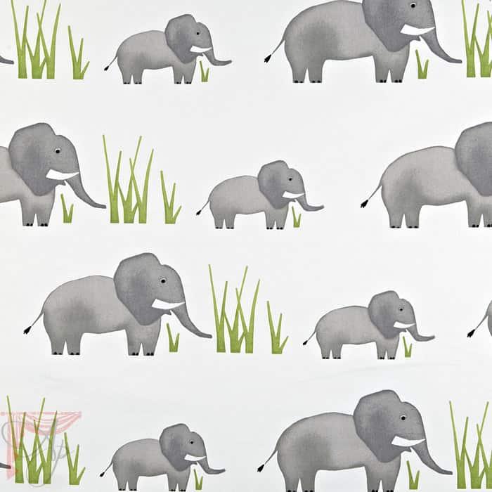 ap_jumbo-elephant