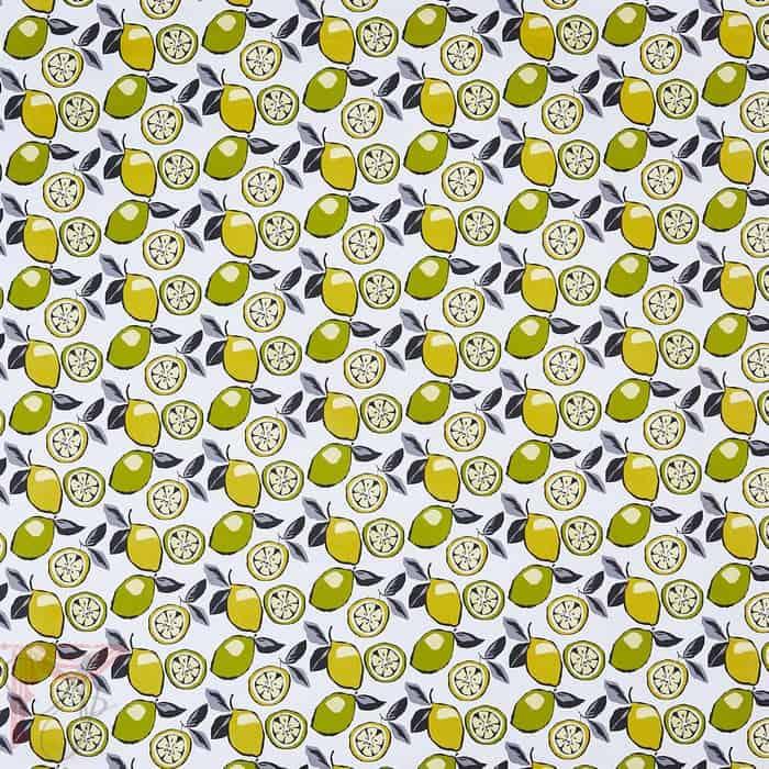 ap_citrus-mojito