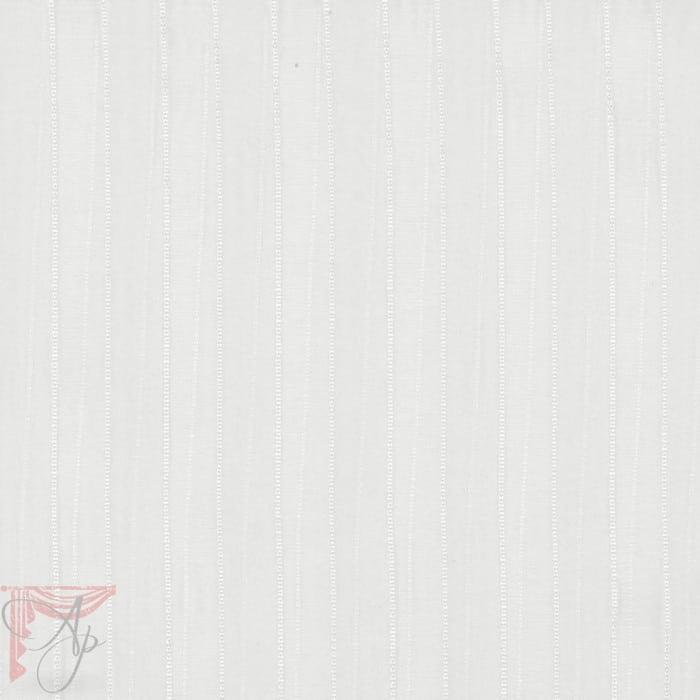AP_carina-parchment