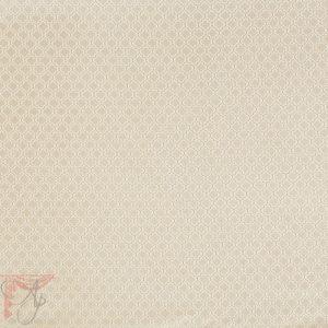 AP_callisto-fawn