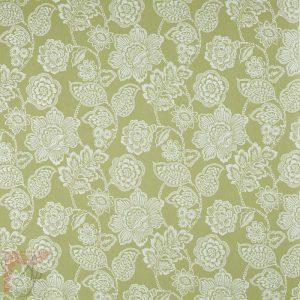 AP_alice-lichen